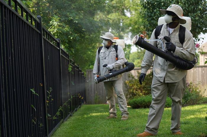 comment faire fuir les moustiques dans un jardin ou à la terrasse produits anti moustiques