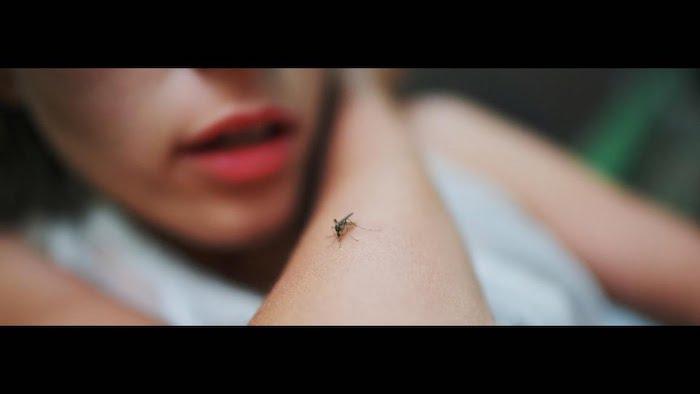 comment se débarrasser des moustiques avant la piqûre utiliser un spray anti moustique