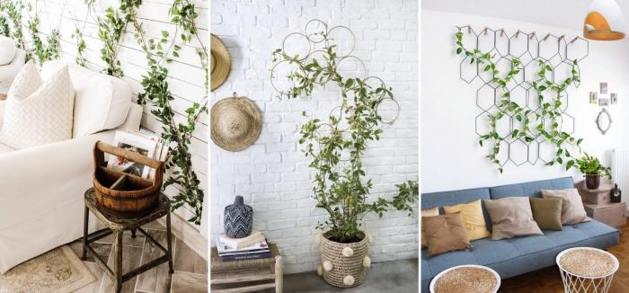 déco murale bohème avec chapeaux plante grimpante liste espèces treillis métal panier cache pot tressé