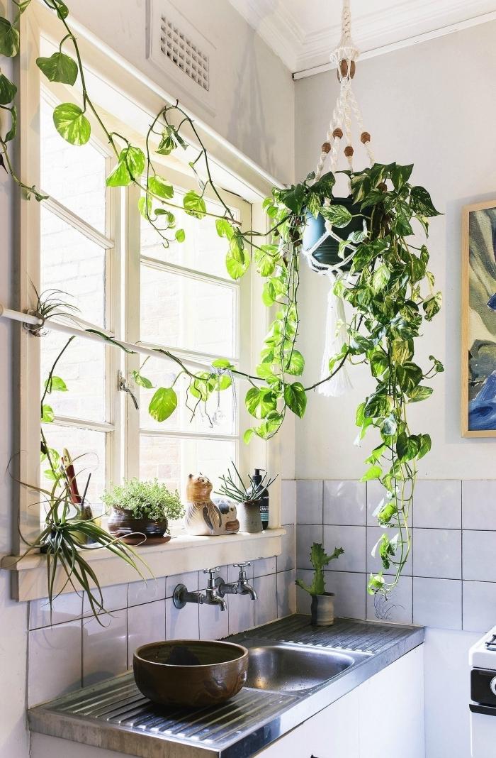 déco petite cuisine fenêtre plante tombante intérieur clips muraux suspension macramé pour plante