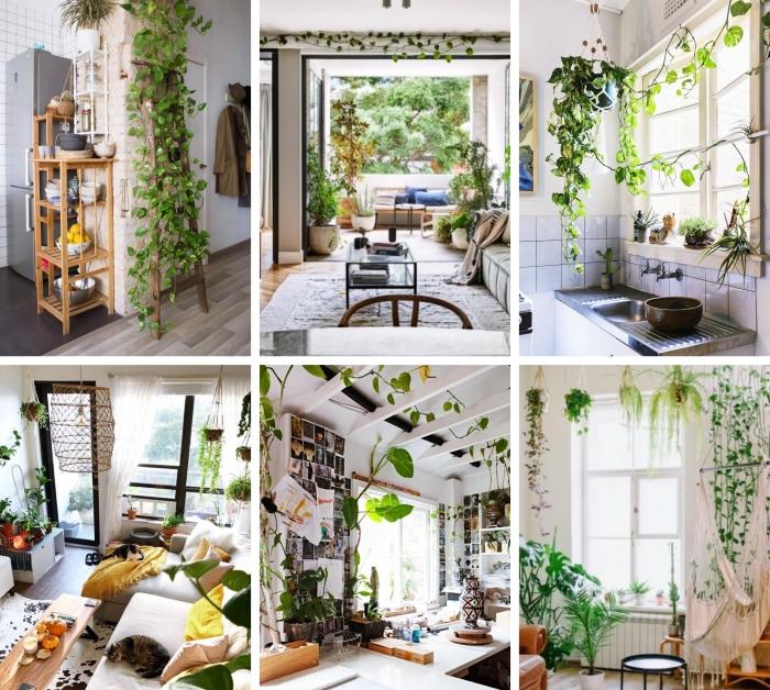 décoration salon bohème style avec plantes jungle urbain décor suspension macramé pots fleur grimpante plante grimpante d'intérieur