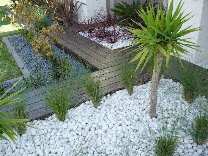 déco massif avec galets blancs et gris jardin avec palmiers buissons et plantes vertes
