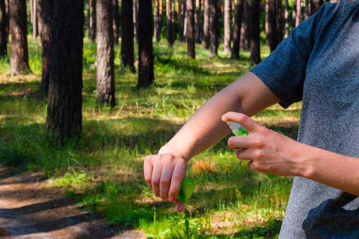 fabriquer son anti moustique naturel à la base de végétaux des vaporisateurs anti moustiques