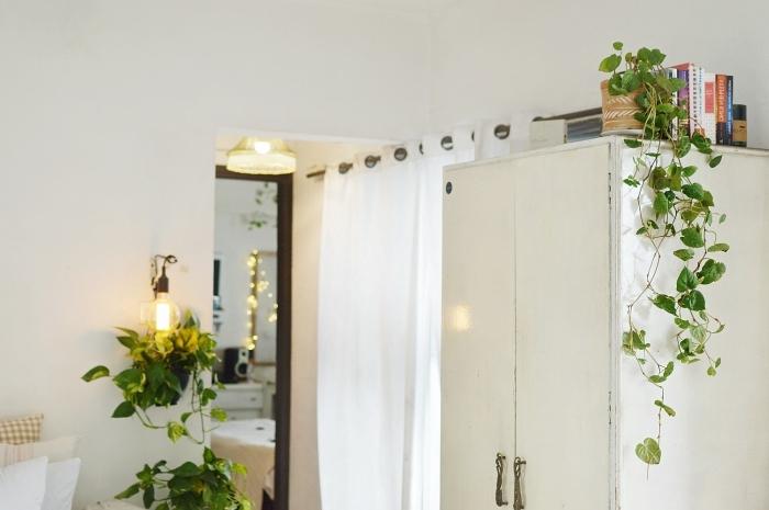 guirlande lumineuse collection livres garde robe blanche plante retombante intérieur pot fleur terre cuite