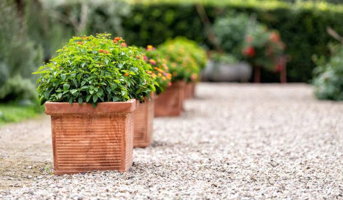 idée déco jardin avec gravier blanc pots de fleurs en ligne à focus