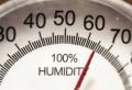 L'humidité dans sa maison : ce qu'il faut savoir