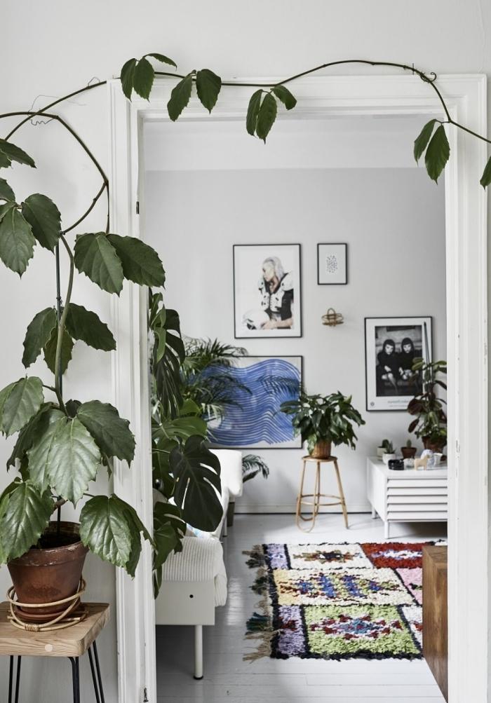 les plus belles plantes d intérieur design intérieur boho moderne scandinave style canapé blanc tapis coloré
