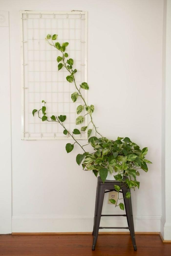 meuble tabouret gris anthracite revetement plancher bois grillage métal blanc deco plante feuilles panachées