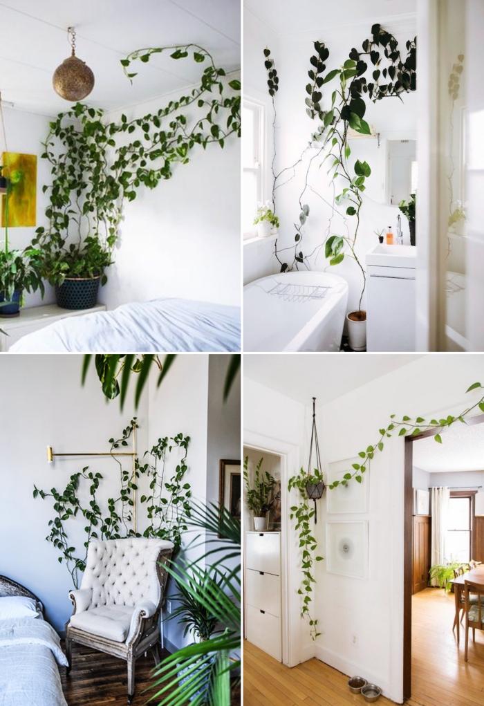 plante grimpante liste support grillage mural métal chaise fauteuil décor bohème style intérieur