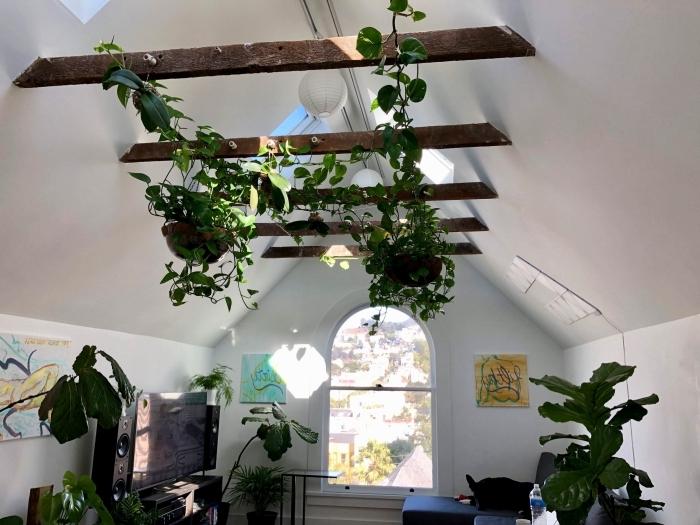 plante suspendue poutre apparente plafond toit fenêtre plante verte pot lanterne papier lumineuse