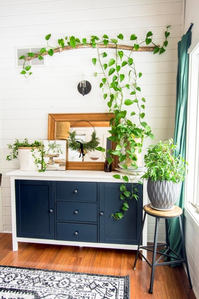 plante tombante intérieur commode bleu et noir miroir cadre bois rideaux verts pot fleur gris