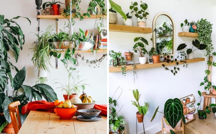 plante verte tombante étagère bois suspendue rangement mural pots de fleur terre cuite monstera grimpant