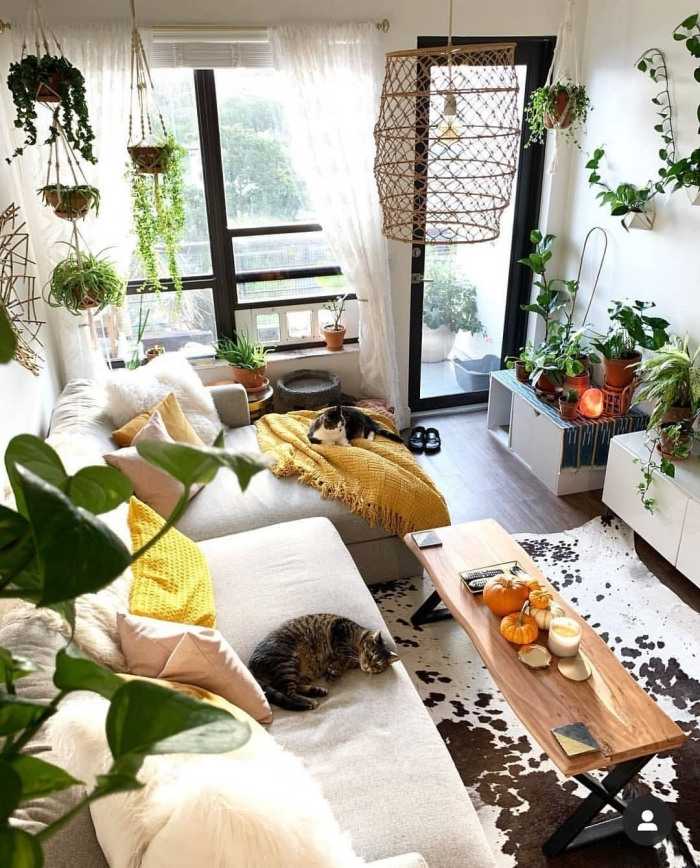 plantes grasses d intérieur plaid jaune frange suspension macramé plante lampe table basse salon