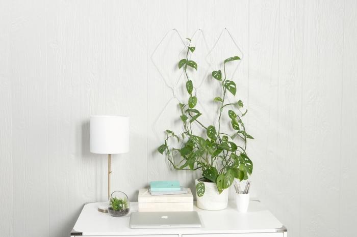 style minimaliste rangement bureau domicile lampe blanche deco plante interieur grillage monstera