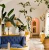 terracotta accents canapé bleu lampe sur pied plante grimpante d intérieur portrait vintage cadre dore