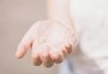 Comment se débarrasser des pucerons : les remèdes maison les plus efficaces