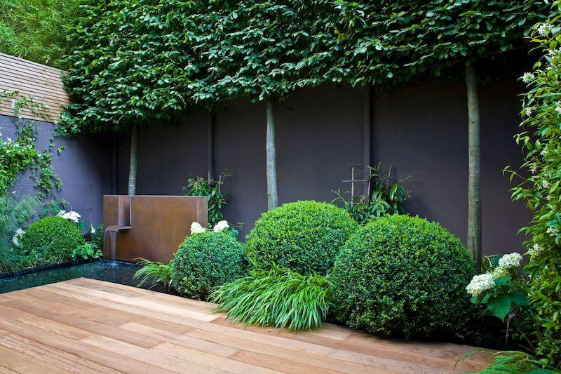 arbustes et haies fleuries pour habiller un mur extérieur avec des plantes