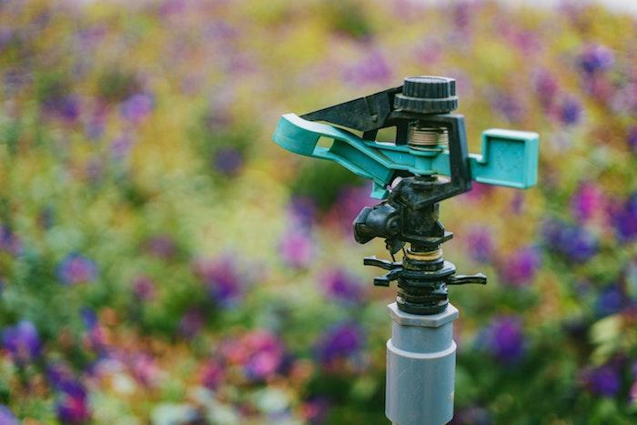 arrosage automatisé idée entretien de jardin automatisé à la maison