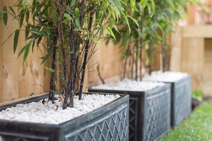 bambou en jardiniere gris foncé du gravier pour drainer l eau