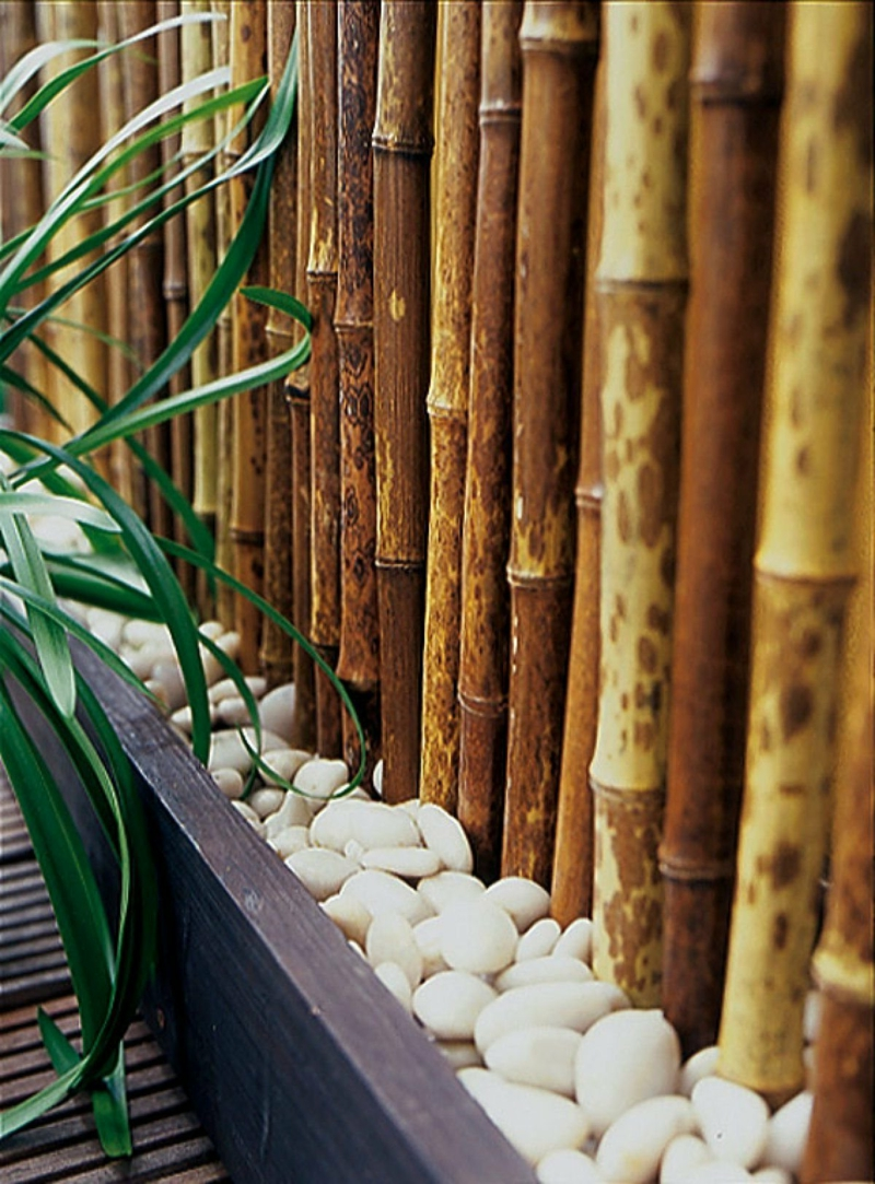 brise vue vegetal bambou qui brise la vue et décore la terrasse