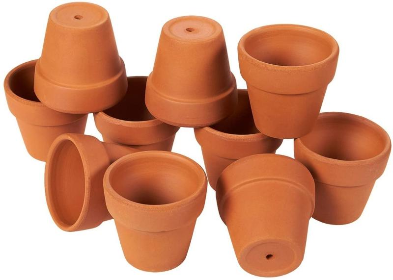 comment faire pousser un citronnier un pot avec un trou de drainage
