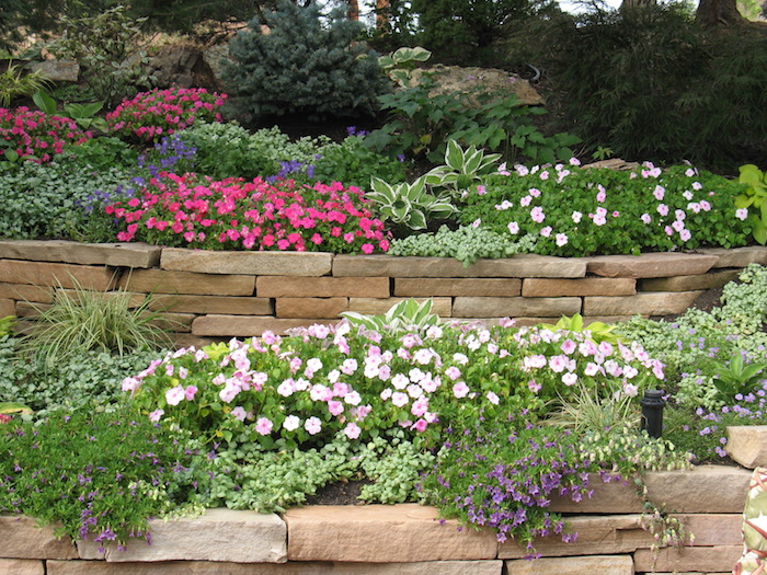 faire une rocaille sans entretien bordures de pierres plantes sans entretien