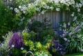 Comment faire un parterre de fleurs sans entretien ?