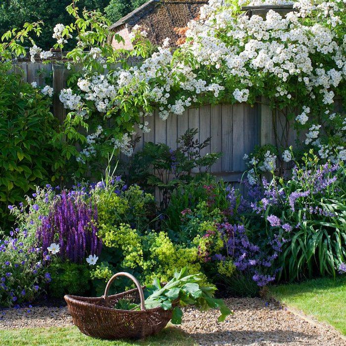 fleurs vivaces longue floraison autour la clôture en bois panier de fleurs