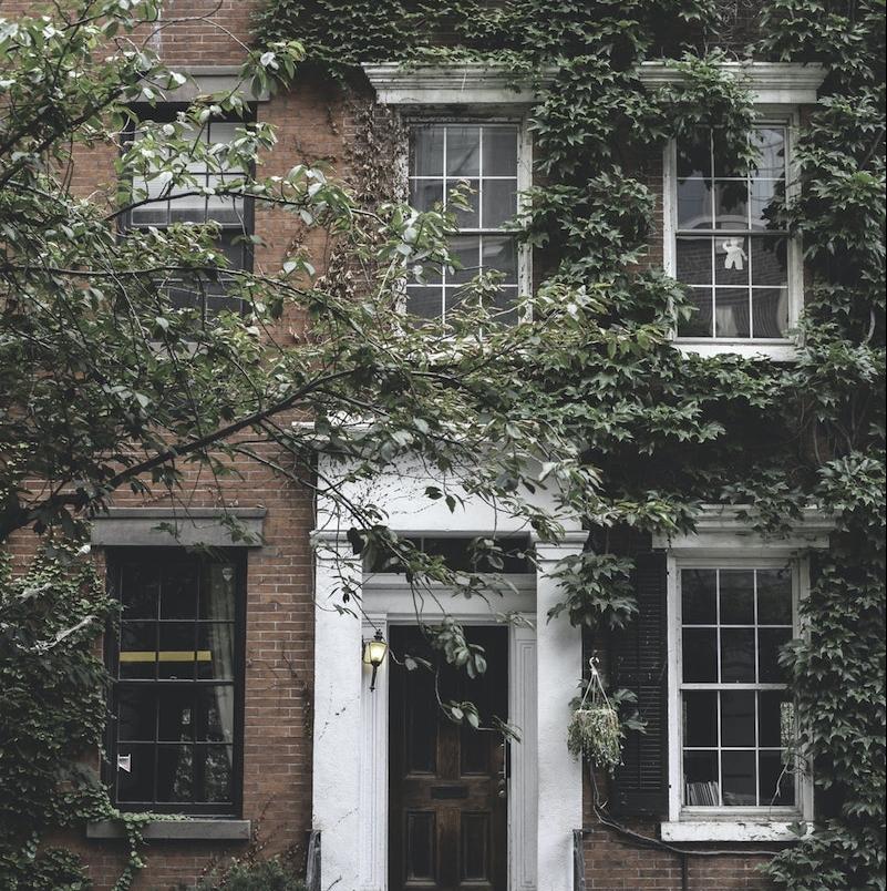 habillage mur exterieur exemple de lierre grimpante façade maison briques