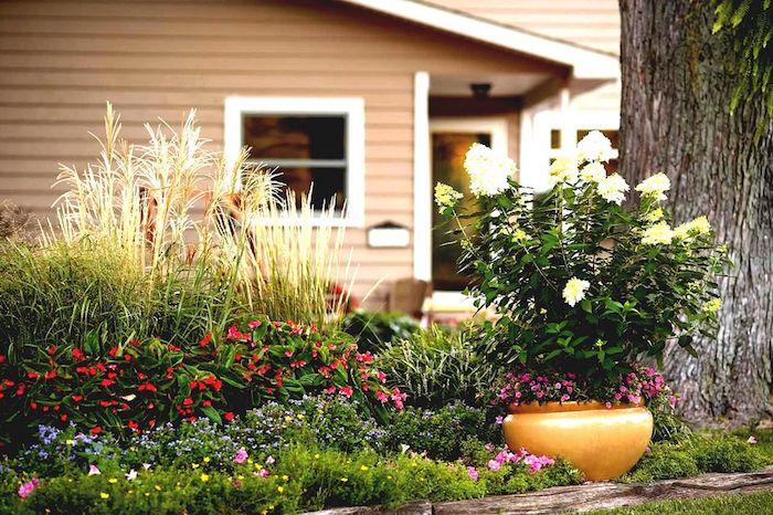 idee amenagement jardin facile plante florifères en arbustes et en pot