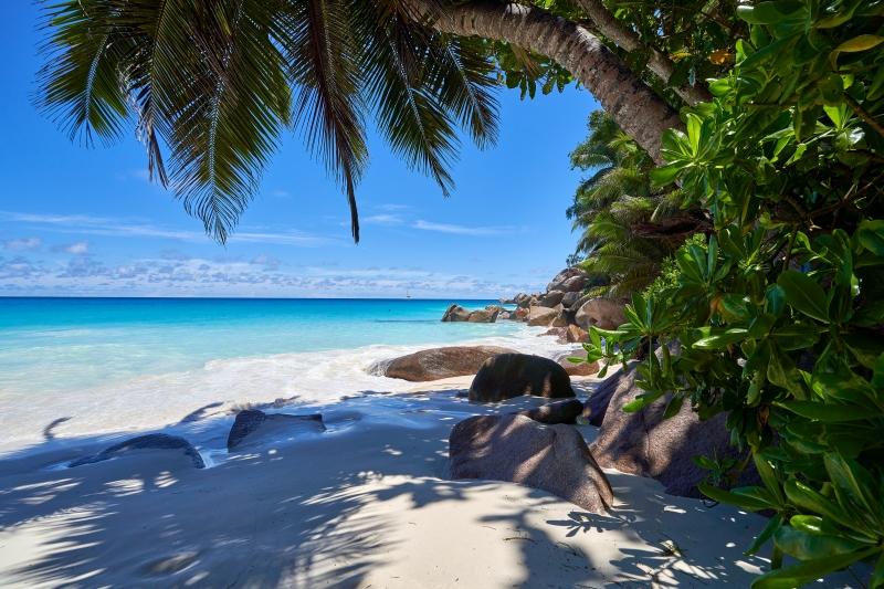 la plus belle ile du monde ombre plage sable fin fond écran paysage