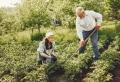 Comment trouver de l'aide pour les petits travaux de jardinage