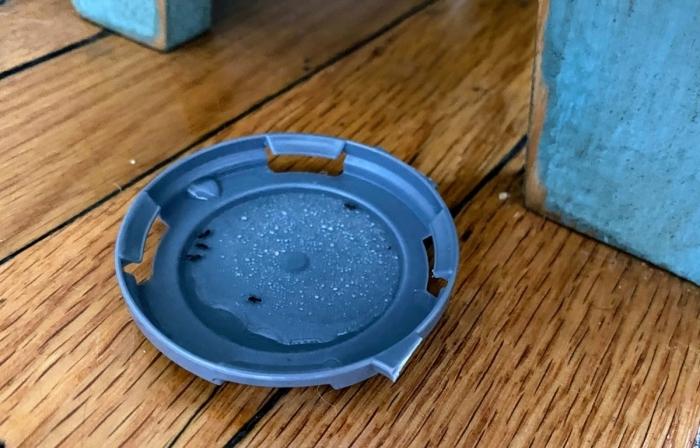 lutte contre insectes d intérieur intrusion dégats sur bois fabriquer piege a fourmis couvercle plastique