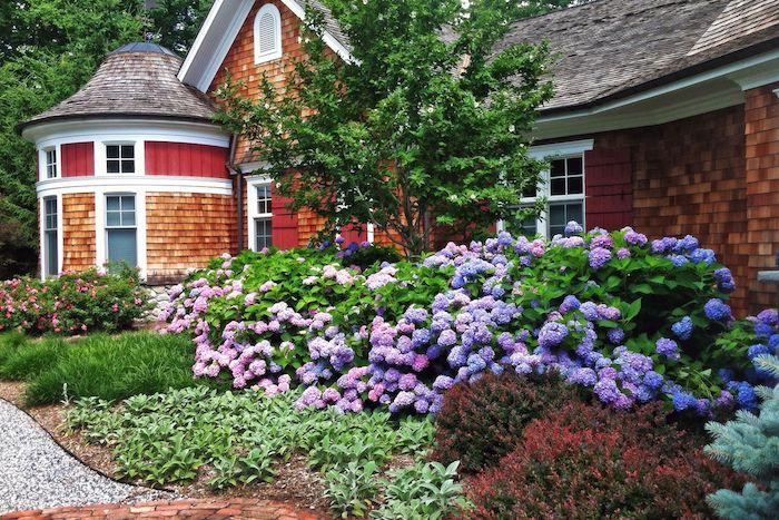 massif de vivaces fleuri toute l année diiférentes variétés devant la maison