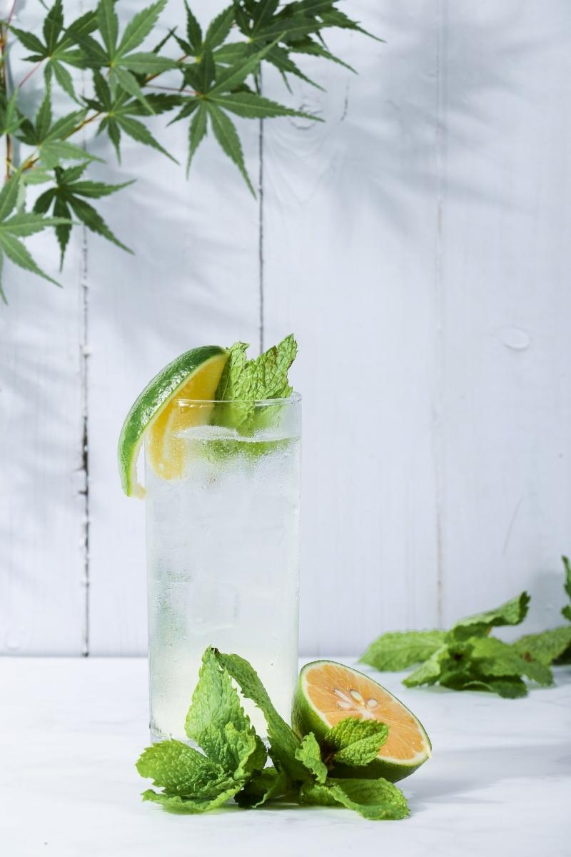 mojito maison préparation facile feuilles menthe fraîche tranches citron jus
