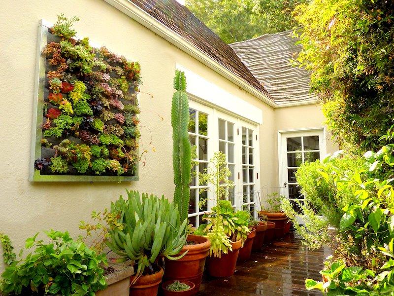 panneau végétal pour habillage mur exterieur original et autes plantes en pot
