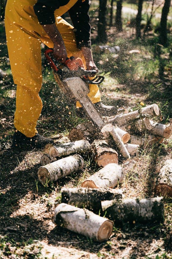 pantalonts pour travailler garde champetre métier qui exige de la protection
