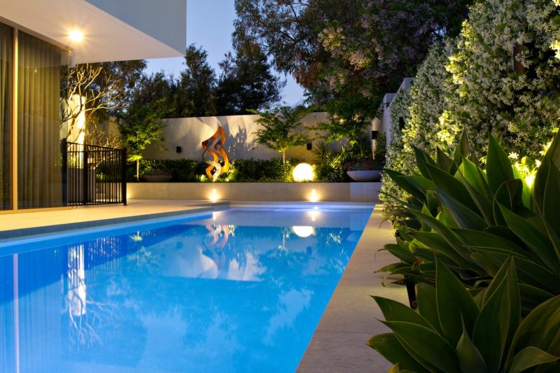 plante bord de piscine jasmin étoilé grimpant comme une haie de piscine