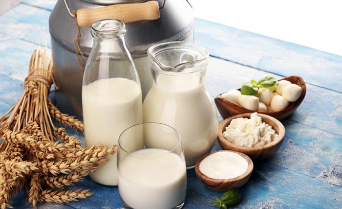 régime méditerranéen produits laitiers lait dans une bouteille fromage dans une coupe