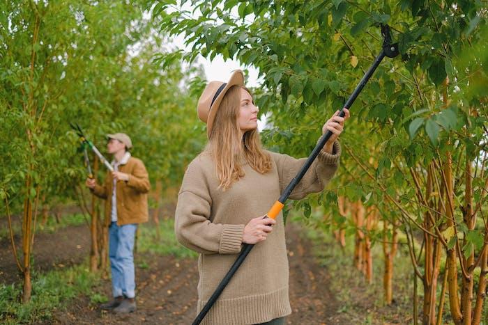 se faire aider par un jardinier professionnele avec le service de jardinage à domicile