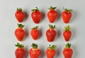 Nos idées délicieuses pour trouver votre recette de sorbet préférée