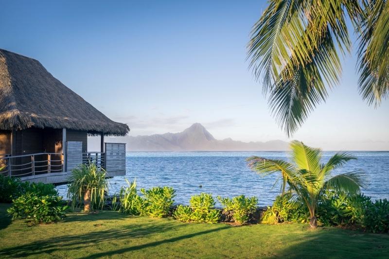 tahiti îles françaises dans le monde gazon maison sur pilots palmiers destination