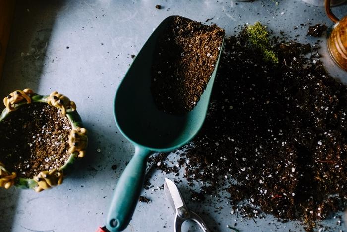 traitement pucerons rosiers remède contre les pucerons terreau pot fleur outils jardinage