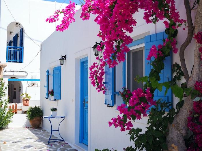 voyage en grèce maison blanche avec fenetres bleues et plantes fuchsia