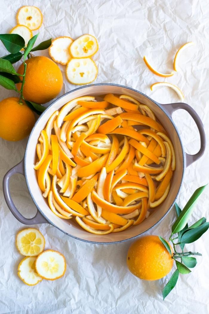 zeste orange casserole eau bouillante mélange anti fourmis maison avec fruits repulsifs insectes