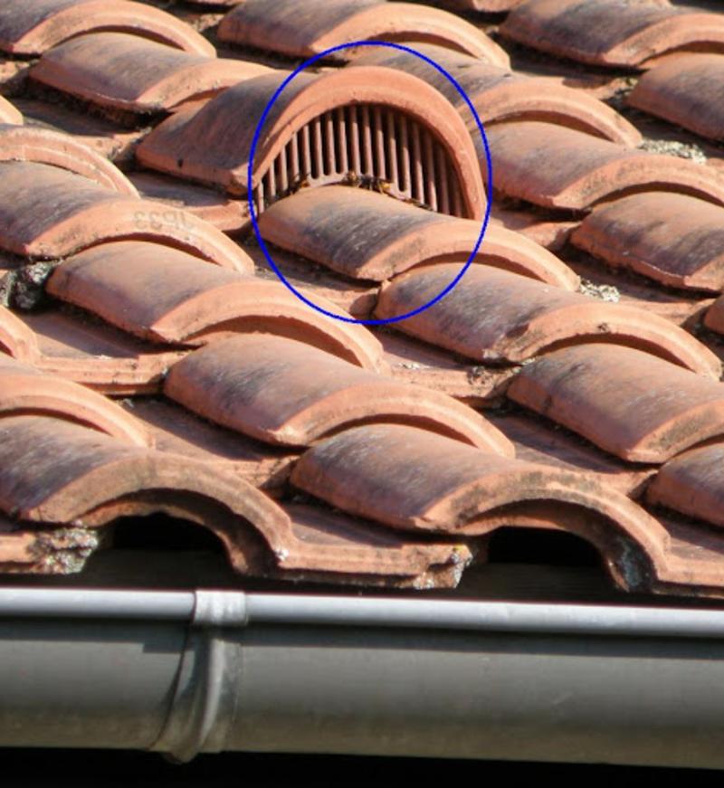 anti pigeon balcon plaque bouche tuiles pour le toit