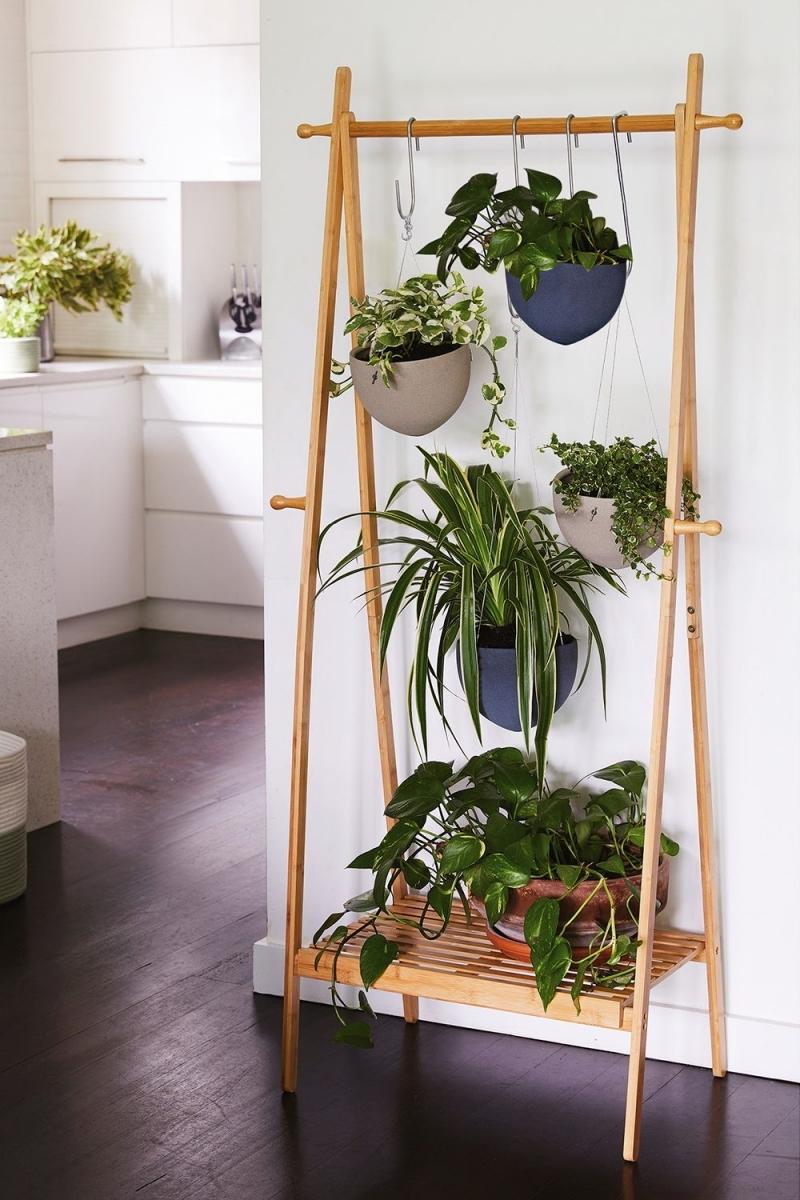 astuce pour suspendre des plantes tringle vetement bois crochets
