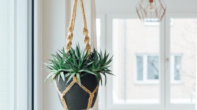 astuces et conseils pour suspendre plantes sans percer macramé suspension beige