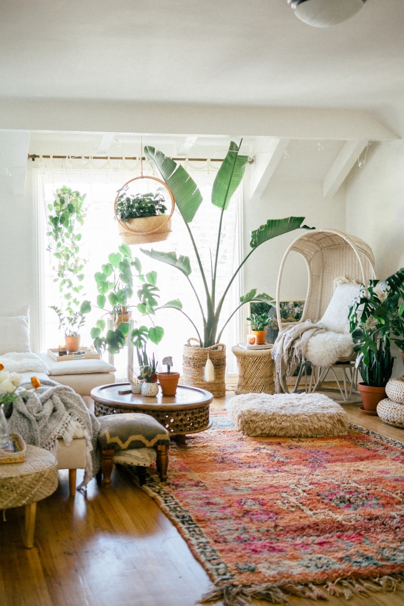 boho chic intérieur décoration avec plantes vertes salon cocooning chaleureux