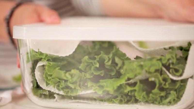 boite conservation salade conserver la laitue dans un récipient scellé